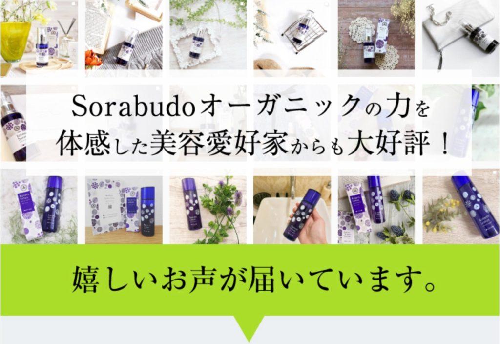sorabudoソラブドウオーガニックトライアルセットが美容愛好家に好評な画像